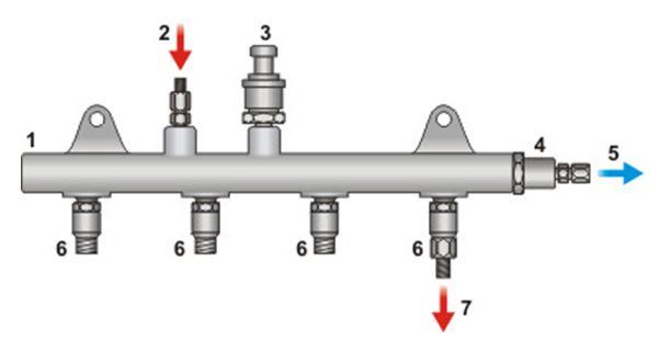 budowa szyny common rail - schemat, rycina